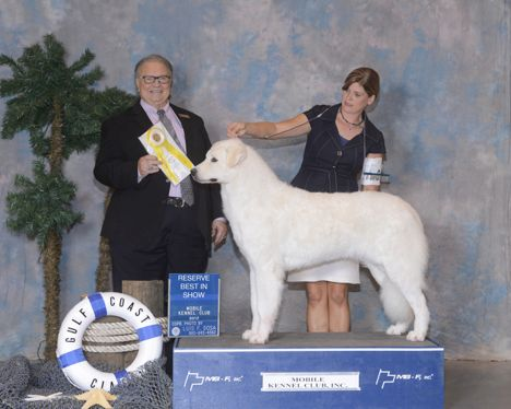 GCH Tryst