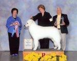 2009 – Tanner Best in Show #1