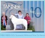 2011 – Tanner BIS # 13