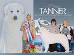 2011 – Tanner BIS #9