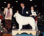 1994-Best_In-Specialty_Show.jpg