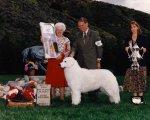 1995-Best_In-Specialty_Show.jpg