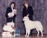 1996-Reserve-Winners-Dog.jpg