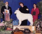 1998-Best_in_Specialty_Show.jpg
