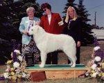 1999-Reserve_Winners_dog.jpg
