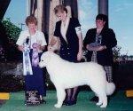 2000-Winners_Dog-BOW-Best_Puppy.jpg
