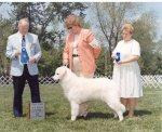 2001-Winner_6to9_Puppy_Dog.jpg