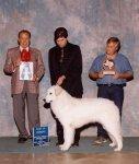 2002-winners_Dog-BOW.jpg