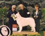 2004-Best_Veteran.jpg